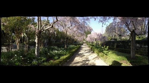 Gamble Garden, Palo ALto, CA