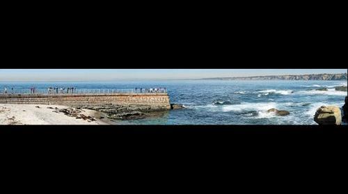 San Diego Seal Wall