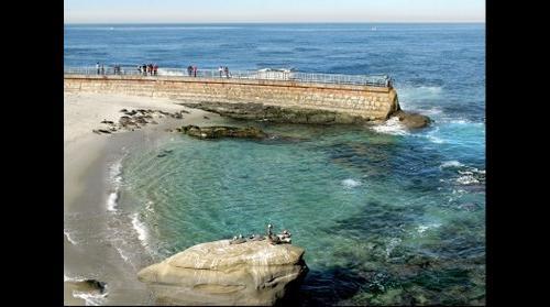 San Diego Seal Beach