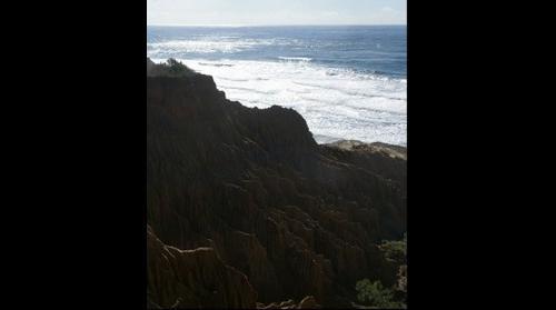 Torrey Pines Wrinkled Cliff