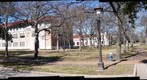Springtime in Late January on Rice Campus and Blue Sky Too ... Prior to Dim Sum