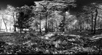 Mohonk (360) New York - Infra Red