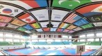 Gukgiwon (Taekwondo) World Headquarters main arena