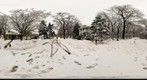 Hartshorne Woods in the Snow (360)
