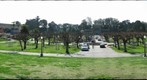Golden Gate Park - Music Concourse 1