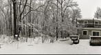 Hartshorne Woods (360) Snow Storm