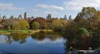 Fall in Central Park, New York City