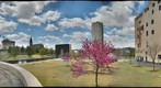 Oklahoma City Bombing Memorial from the Survivor Tree