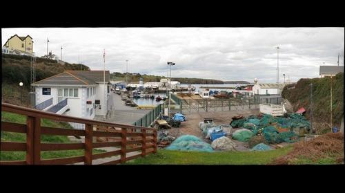Harbor View (No.1) - Dunmore East,Ireland