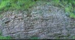 Another Chert Wall