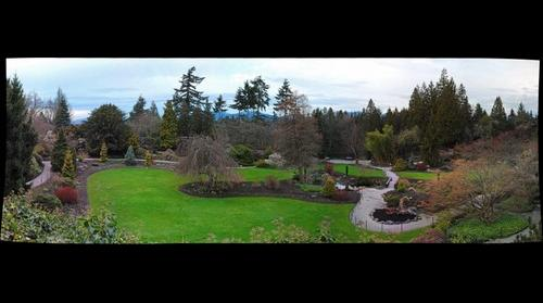 Queen Elizabeth Park Garden
