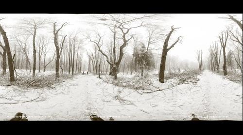 Lvov, Stryiski park