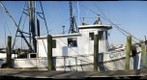 Brunswick, Georgia, Shrimp Boats, No. 2