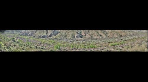 Upper part of 'Racetrack Reach', Bill Williams River, Arizona