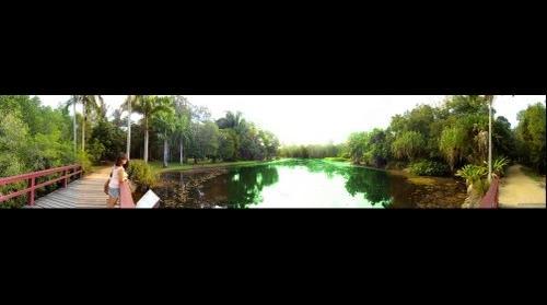 Cairns Botanic Garden / Centenary Lakes