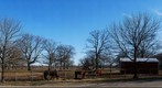 whereRU: Horse Field Across the New Jersey Museum of Agriculture