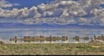 Mono Lake, CA HDR