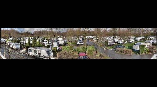 camping Delftse Hout