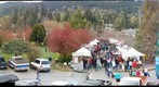salt spring island saturday market