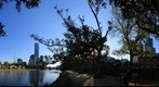 Melbourne Skyline and Yarra River from North Channel (Full Size), Apr 16, 2010 at 4:28pm
