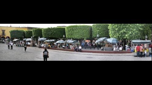 Jardin in San Miguel de Allende Mexico
