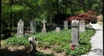 Cemetery of St. John in the Wilderness Episcopal Church - Flat Rock, NC #2