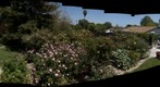 100506 Goleta, California backyard rose circle plus east boxes