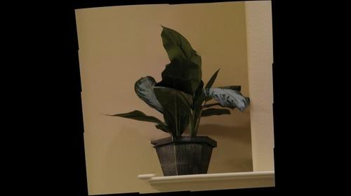 fake plant test