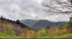 Newfound Gap (Great Smoky Mountains)