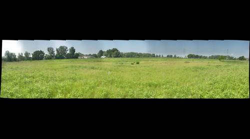 Calumet City Prairie