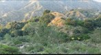 Eaton Canyon (1)