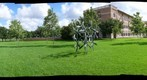 Ten Big Standing Bronze Flowers -  Magnificant Seven - Houston Celebrates Surls - Rice University - 360 Degree Panorama