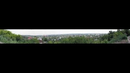 Vesnina