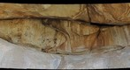 Panel SE23 Hueco Tanks, TX Pictographs