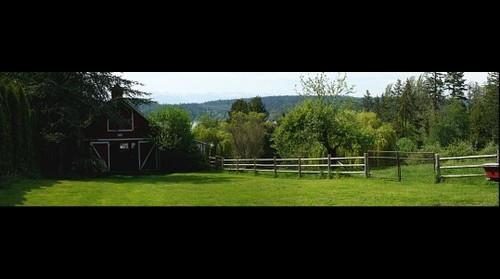 Seabold Farm, Bainbridge Island WA