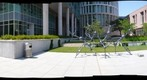 Walking Molecular Flower - Magnificant Seven - Houston Celebrates Surls - Rice University - 360 Degree Panorama