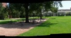 Again The Tree, Knot, Flower and Me - Magnificant Seven - Houston Celebrates Surls - Rice University - 360 Degree Panorama