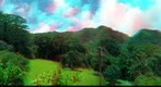 Lyon Arboretum, Honolulu -- Anaglyph test