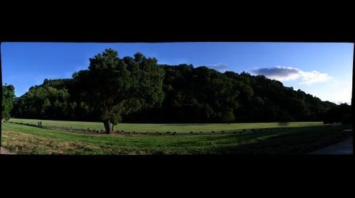 Palo Alto Foothills Park