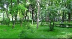 360 Panorama from Copou Park - Iasi