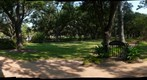 Rice University: Alice's Garden Gate (Alice Staub Liddell)