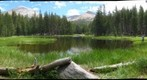 Yosemite Pond    RIGHT image