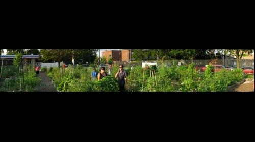 Garden Project2