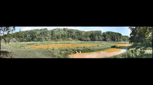 Wingfield Pines Wetland Treatment System