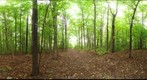 Dairy Bush GigaPan - 56 - Sept 22 2010