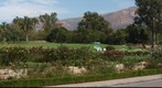 100930 Santa Barbara A. C. Postel Rose Garden Mission Historical Park from Plaza Rubio