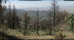 palomar mt view
