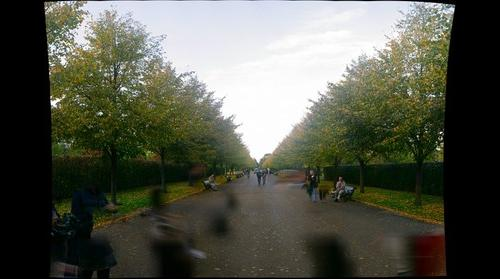 A Day at Regents Park 1