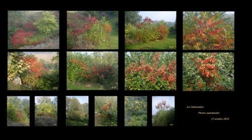 balarandos photos automnales 15-10-2010
