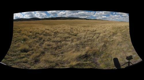 EFLCR Multi-Grazing Landscape